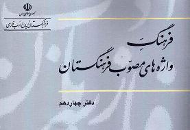 دلیل شوخیهای مردم با واژههای مصوب فرهنگستان