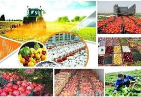 ۶پروژه اقتصاد مقاومتی در بخش کشاورزی کردستان اجرا شد
