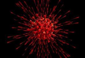 نقش موثر به هم ریختگی تعادل تنوع زیستی بر شیوع ویروس کرونا
