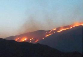 آتش سوزی گسترده در منطقه حفاطت شده خائیز کهگیلویه