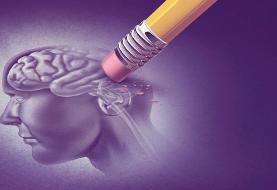 امکان تشخیص زودهنگام آلزایمر: رژیم غذایی پیشنهادی برای جلوگیری از آلزایمر