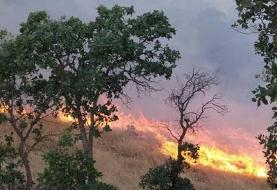 اعزام اکیپهای مهار آتش به جنگل خسرج