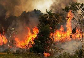آتشسوزی گسترده در جنگلهای پاوه