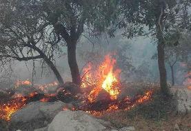 هلیکوپترها به داد جنگلهای شعلهور در آتش نمیرسند