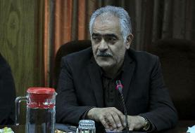 گلمحمدی: ۸۰ درصد فعالیتهای ورزشی استان تهران از سرگرفته شده است