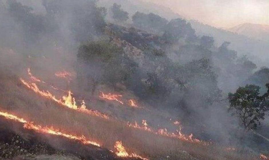 امکانات محدود برای مهار آتشسوزی در جنگلهای زاگرس