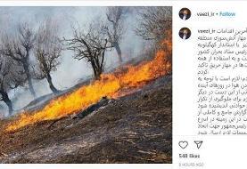 گزارش کاملی از اقدامات مهار آتشسوزی کهگیلویه و بویراحمد به رییس جمهور ارسال میشود