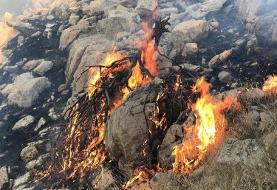 منطقه حفاظت شده خائیز در وضعیت فوق العاده بحران