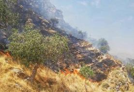 حضور نجاتگران هلالاحمر در ۳ جبهه آتشسوزی در جنگلهای خوزستان