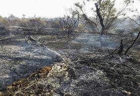 درخواست کمک برای مهار آتش در خائیز | امکانات فعلی جوابگو نیست