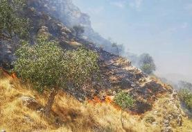 مهار آتشسوزی در خاییز بهبهان