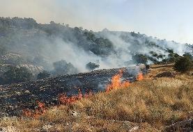 آتش در ارتفاعات خائیز کهگیلویه و بویراحمد مهار شد