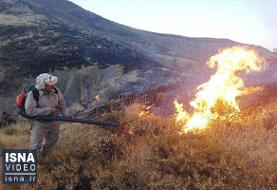 ویدئو / ادامه آتشسوزیها در جنگلهای «خائیز»