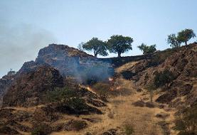تلاش برای مهار کامل آتشسوزی در کوه سیاه دشتستان ادامه دارد