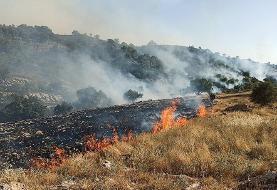 (تصاویر) آتش سوزی در منطقه حفاظت شده خائیز