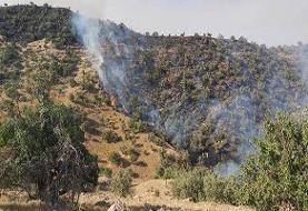 مهار آتشسوزی جنگلهای خائیز؛ نیازمند هلیکوپتر آبپاش و بالگرد بیشتر