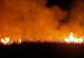 (ویدیو) جزئیات آتش سوزی بوستان ولایت؛ هزار متر از حاشیه بوستان در آتش سوخت