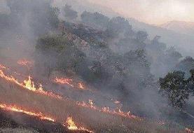 مهار آتش سوزی خاییز در حوزه کهگیلویه/ آتش سوزی از سمت حوزه بهبهان شعله ور است
