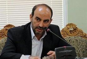 صفایی: باید اهرم فشار آمریکا از سر ملت ایران کوتاه شود