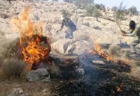 آتشسوزی جنگلهای دیل گچساران و کوه خائیز ادامه دارد