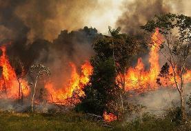 اعزام بالگردهای ارتش و سپاه برای مهار آتشسوزی جنگلهای خوزستان و بوشهر | خائیز همچنان میسوزد