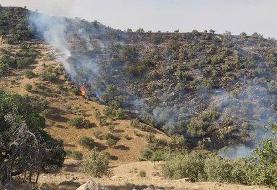 مهار آتش سوزی جنگلهای خائیز نیازمند هلیکوپتر آبپاش و بالگرد بیشتر