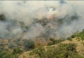 هزاران هکتار از مراتع کوه سیاه دشتستان در آتش سوخت