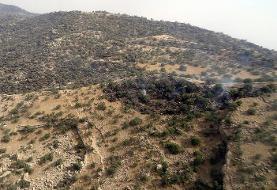 منابع طبیعی بوشهر: ۱۱۰۰ هکتار از مراتع کوه سیاه دشتستان در آتش سوخت