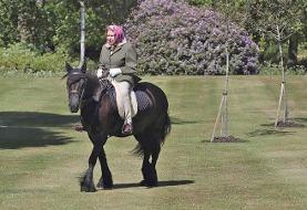 ملکه سوار بر اسب سلطنتی از قرنطینه کرونا بیرون آمد