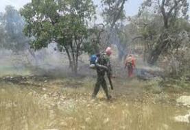 آتشسوزی جنگلها و مراتع دیل در گچساران مهار شد