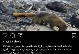 (عکس) واکنش علی دایی به آتشسوزی زاگرس