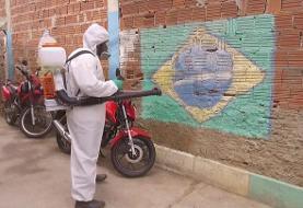 کرونا و خشم در برزیل؛ حامیان و مخالفان بولسنارو روبروی هم ایستادند