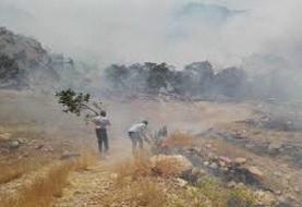 فیلم | تصاویر تکاندهنده آتش سوزی کوه دیل در گچساران