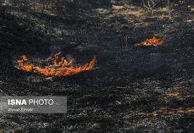 مهار آتش در کوه سیاه بوشهر پس از ۱۲ ساعت