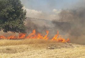 نیروهای یگان حفاظت منابع طبیعی خراسان جنوبی آماده برای مقابله با حریق