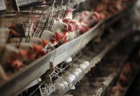 بازگشت سه طرح تولیدی همدان به چرخه تولید