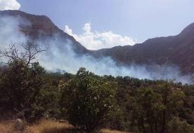 آتشسوزی ارتفاعات دالاهو ادامه دارد