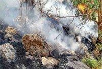کنترل آتش سوزی جنگل های خائیز کهگیلویه