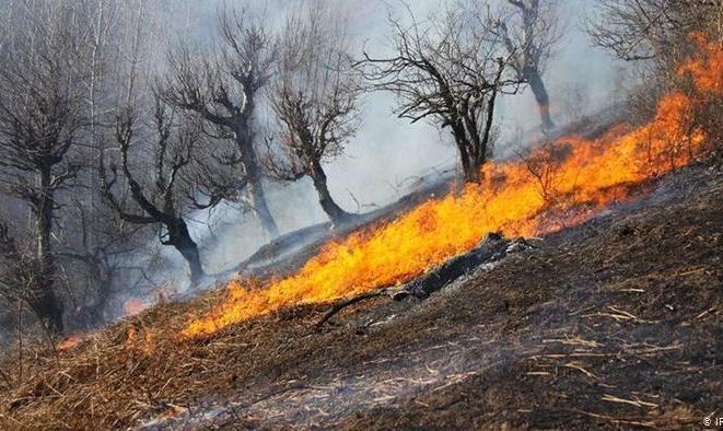 آتشسوزی در جنگلهای پاوه همچنان ادامه دارد: بدرقه پیکر سه فعال جانباخته محیط زیست
