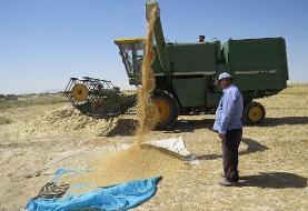 ممنوعیت خروج گندم از سیستان و بلوچستان بدون مجوز