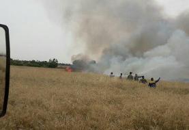 آتشسوزی در مزرعه گندم ورامین مهار شد