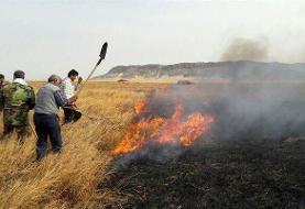 آتش، تهدید جدی برای تالاب هامون