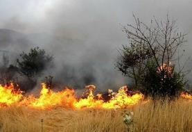 چه کسانی خائیز را آتش زدند؟