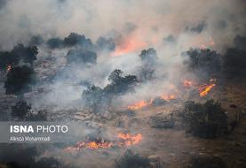 عوامل آتش سوزی جنگلهای خائیز دستگیر شدند