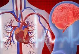 وزارت بهداشت: سکتههای «قلبی» و «مغزی» علت نیمی از مرگهای زودرس در کشور