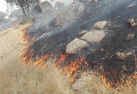 آتشسوزی در جنگلهای بلوط بلند سدکارون ۴ مهار شد