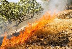 جنگلهای ماهور باشت کهگیلویه در جولان شعلههای آتش