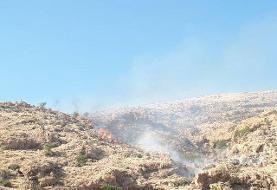 درخواست کمک برای مقابله با آتش سوزی در ارتفاعات باشت