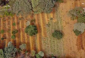 پرواز فرشته مرگ کرونا بر فراز برزیل و مکزیک | ۲۳۵۰ کشته در ۲۴ ساعت