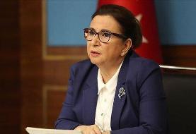ترکیه از بازگشایی مرزهای زمینی خود با ایران و عراق خبر داد